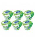 Al Maraai Yoghurt Full Fat 6x170 g