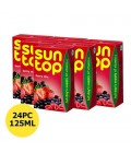 Sun Top Berry Mix Juice 24x125 ml