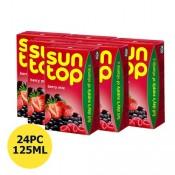 Sun Top Berry Mix Juice 24x125 ml